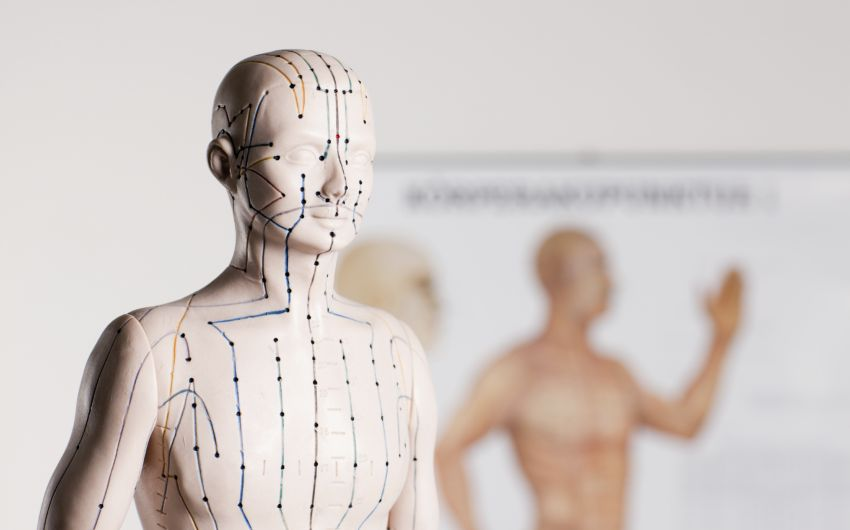 Die Akupunkturpunkte liegen auf den Meridianen.