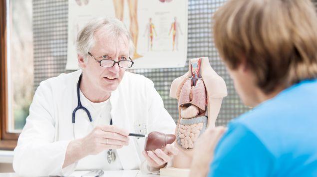 Ein Arzt zeigt einem Patienten ein Modell von einer Leber.
