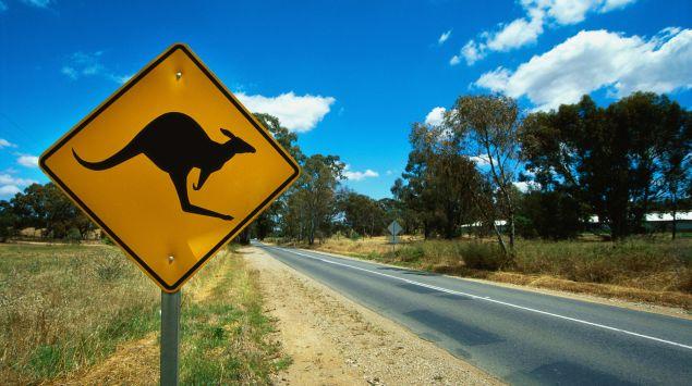 Das Bild zeigt ein Schild mit einem Känguru.