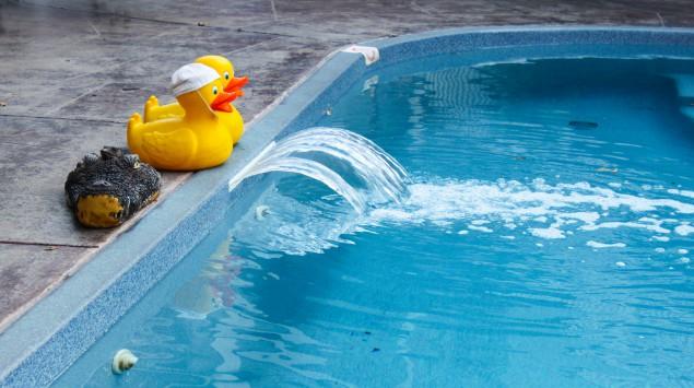 Zwei Badeenten am Rand eines Schwimmbeckens: Je stärker es nach Chlor riecht, desto mehr Urin befindet sich im Becken.