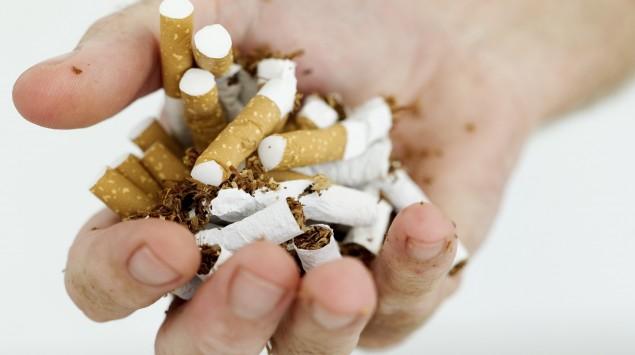 Jemand hält zernrochene Zigaretten in der Hand.