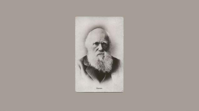 Man sieht eine Aufnahme von Charles Darwin.