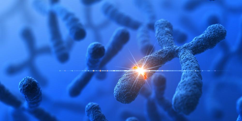 Man sieht stilisierte Chromosomen mit einer durch einen leuchtenden Punkt dargestellten genetischen Veränderung.