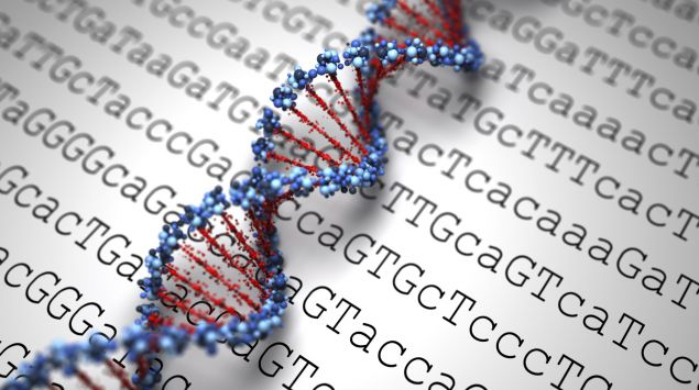 Das Modell einer DNA-Doppelhelix liegt auf einem Ausdruck der Ausschnitte eines genetischen Codes zeigt.