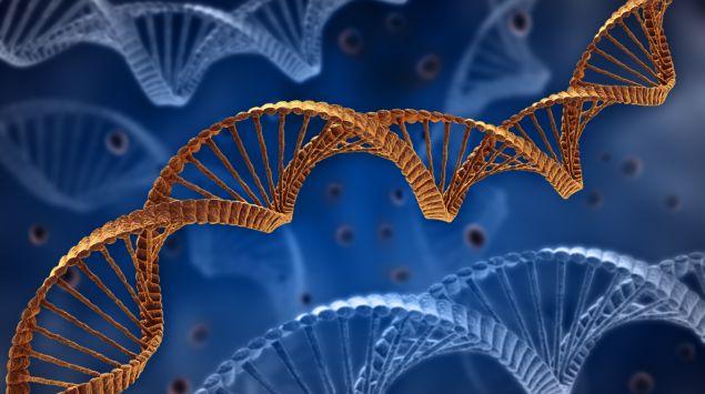 Das Bild zeigt eine DNA-Helix.