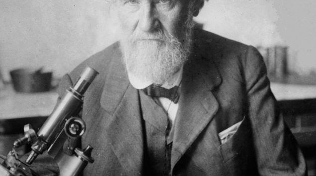 Ein Porträt von Elias Metchnikoff.