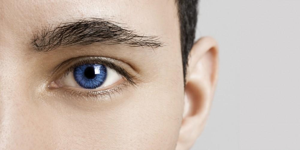 Anatomía del ojo - Onmeda.es