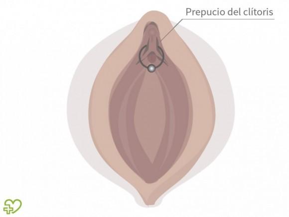 Piercing genital El piercing genital en las mujeres: Piercing ...