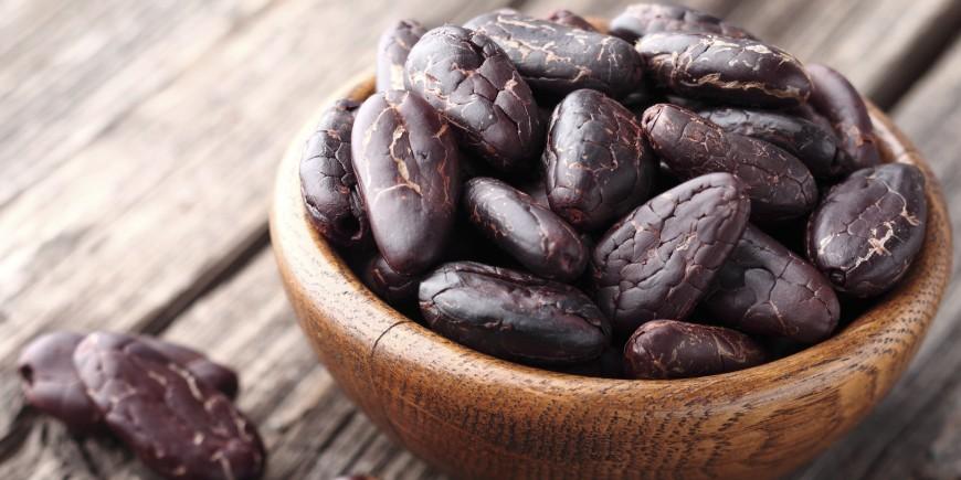 Resultado de imagen de propiedades del cacao piel minerales vitaminas