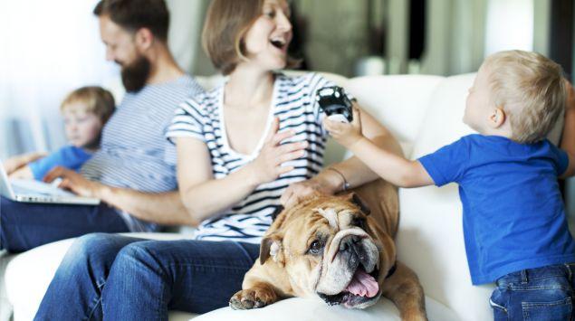 Das Bild zeigt eine Familie mit Hund, die auf dem Sofa sitzen.