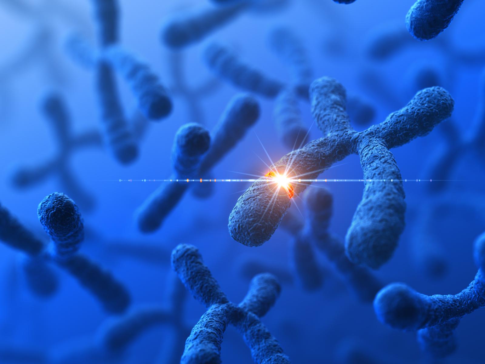 Le syndrome de Turner est dû à la perte totale ou partielle d'un chromosome X chez le fœtus de sexe féminin.