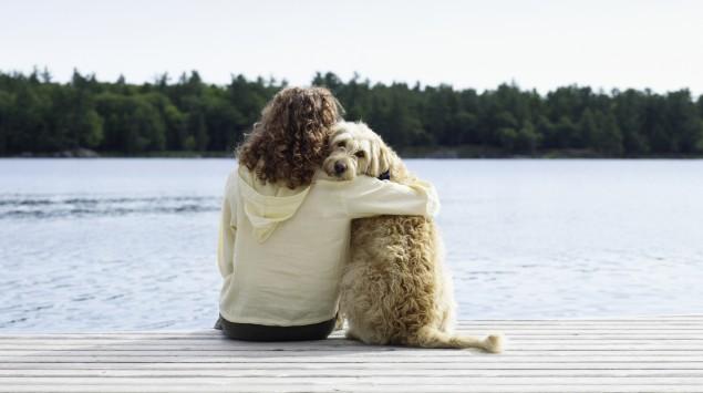 Herzwürmer können Hund und Mensch befallen.