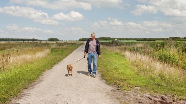 Ein Mann geht mit seinem Hund Gassi.