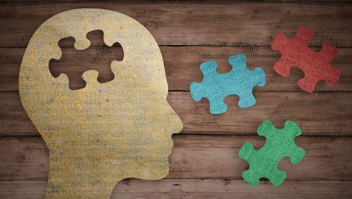 Das Bild zeigt die schematische Darstellung eines Kopfes mit verschiedenen Puzzleteilen.
