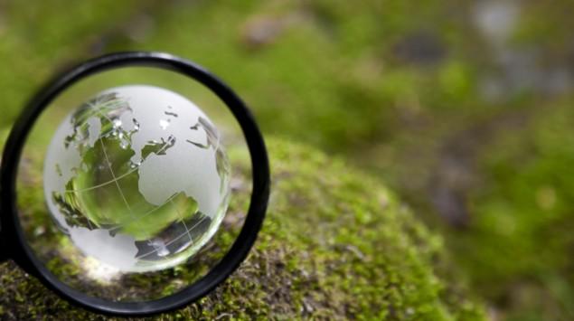 Man sieht einen Briefbeschwerer in Globus-Form auf einem moosbewachsenen Stein und eine Lupe.