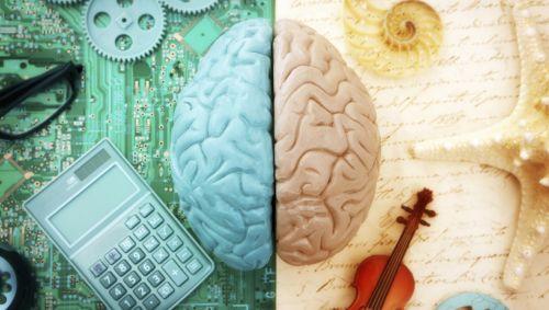 Eine grafische Darstellung der beiden Gehirnhälften,