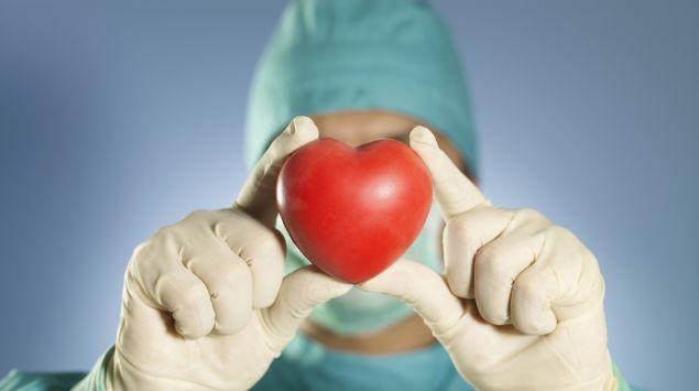 Ein Arzt in OP-Kleidung hält mit beiden Händen ein künstliches Herz vor sein Gesicht.