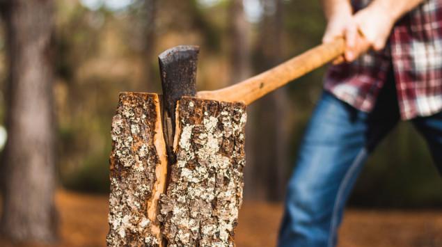 Ein Mann hackt im Wald Holz.