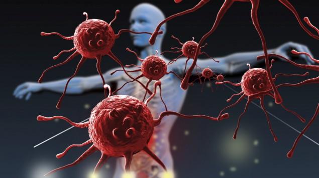 Illustration: Die menschliche Immunabwehr.