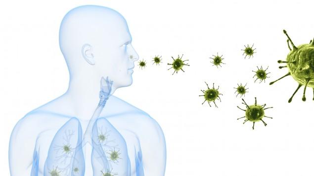 Die Illustration zeigt Krankheitserreger, die in die Lunge eindringen.