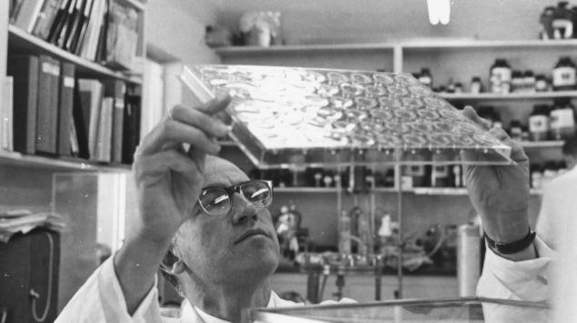 Ein Bild von Jonas Salk bei der Arbeit.