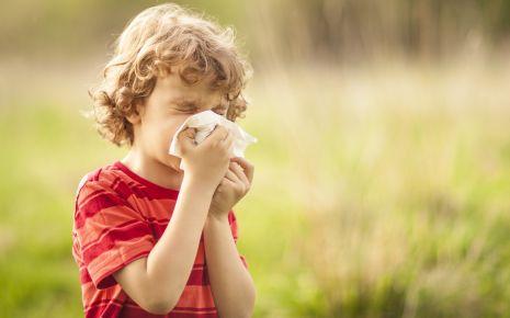 Ein kleiner Junge niest.