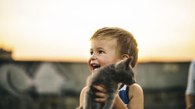 Das Bild zeigt einen Jungen mit einer Katze auf dem Arm.