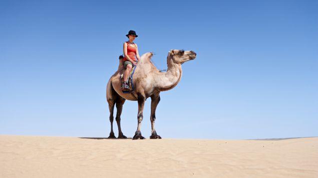 Man sieht eine Touristin auf einem Kamel.