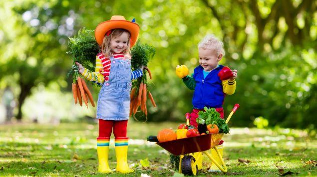 Zwei Kinder mit einer Schubkarre voll Gemüse.