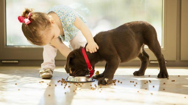Das Bild zeigt ein kleines Mädchen, das einen Hund streichelt.