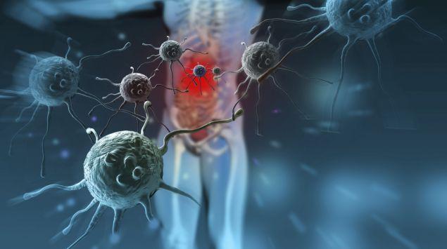 Das Bild zeigt eine Illustration von einem Körper und Körperzellen.
