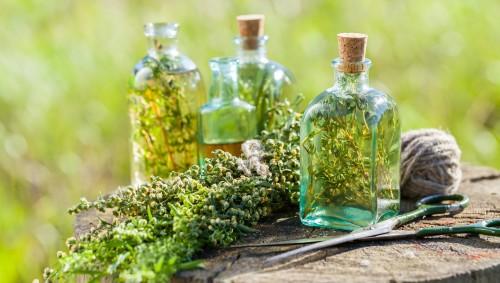 Auf einem Baumstumpf liegen eine Schere, Kordel und verschiedene Kräuter, daneben stehen mehrere Flaschen mit ätherischem Kräuteröl oder eingelegten Kräutern.