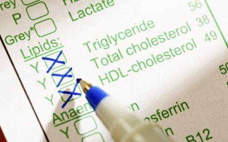 Man sieht ein Formular mit Angaben, welche Blutwerte untersucht werden sollen (Triglyceride, Cholesterin)