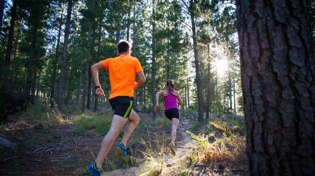 Das Bild zeigt zwei Menschen, die durch den Wald laufen.