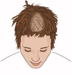 Das Vitamin und für das Haar das Referat