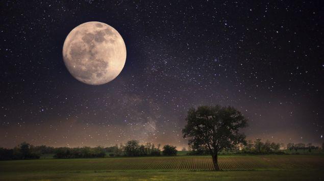Das Bild zeigt den Mond im Nachthimmel.
