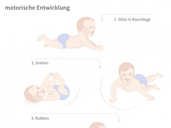 wann drehen sich babys