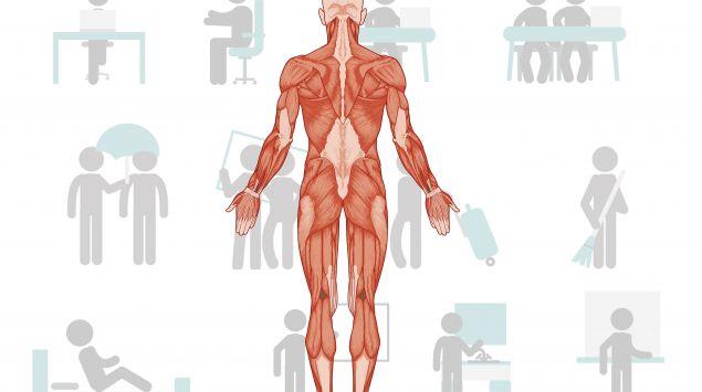 Illustration: Ein menschlicher Körper mit Muskeln, im Hintergrund verschiedene Tätigkeiten.