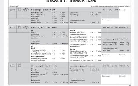 Mutterpass Seite 10 und 11