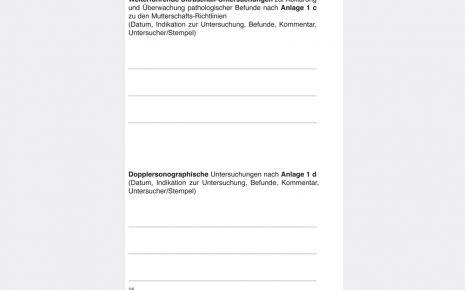 Mutterpass Seite 14