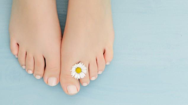 Gepflegte Füße mit Gänseblümchen auf blauem Untergrund.