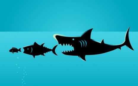 Nahrungskette aus drei Fischen