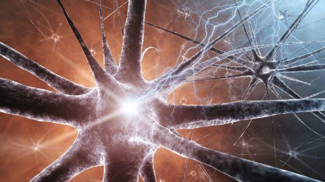Man sieht ein Netz aus Neuronen.