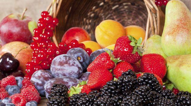 Man sieht verschiedene Obstsorten.