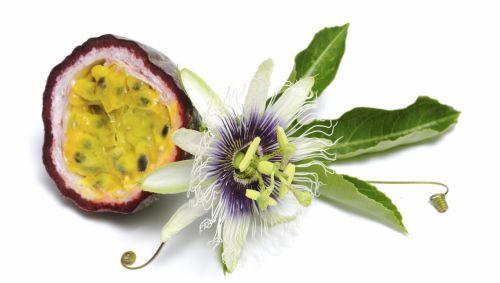 Eine Passionsfrucht neben einer Passionsblume.