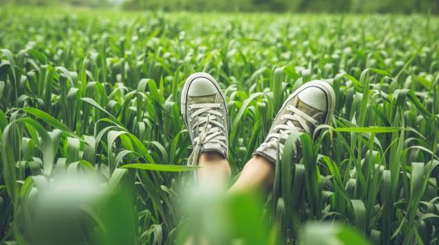 Man sie die Beine von jemandem, der im Gras liegt.
