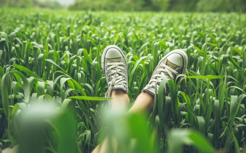 Antiallergikum: Man sie die Beine von jemandem, der im Gras liegt.