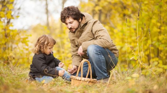 Vater und Tochter sammeln Pilze
