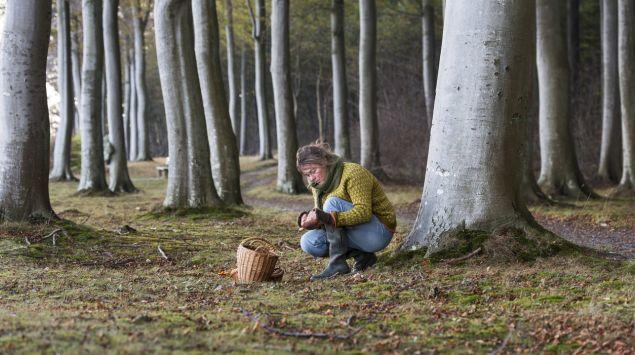 Eine Frau sammelt im Wald Pilze.