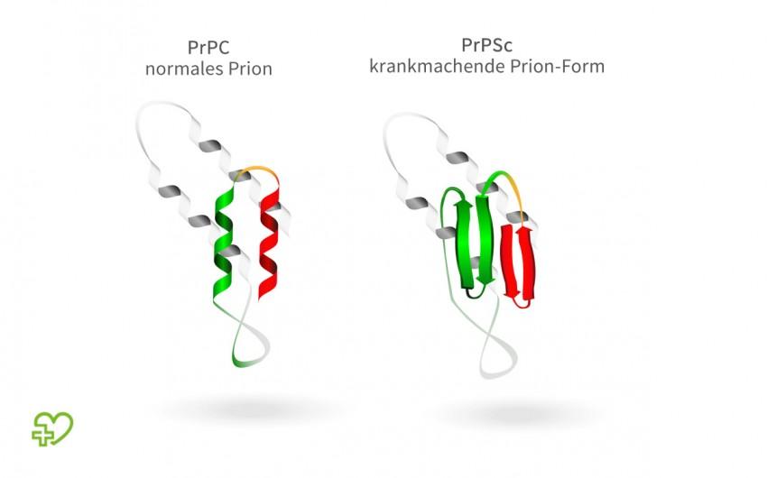 Schematische Darstellung von Prionen